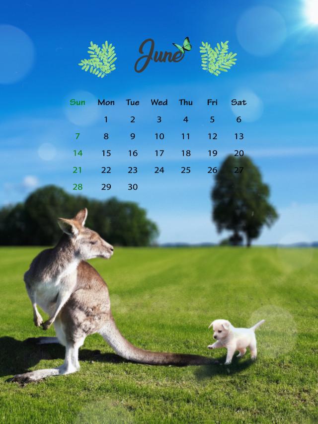 #freetoedit #kangaroo #puppy #grass #magicbrush #picsarteffects #madewithpicsart #animals #calendar #animals  #srcjunecalendar #junecalendar ##summertime