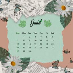 freetoedit calendar calendario 2020 asthetic srcjunecalendar junecalendar #summertime
