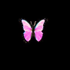 freetoedit бабочка розовая айфон butterfly