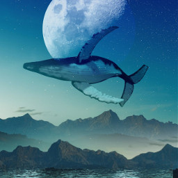 freetoedit photomanipulation surreal blending fantasyworld