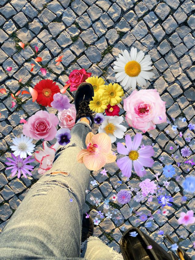 #freetoedit #porto #floral #interesting