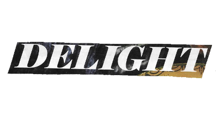 delight text quote word cutout freetoedit