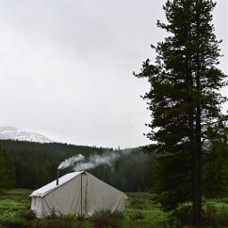 whimsical nature naturephotography snow fog freetoedit