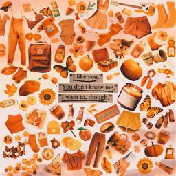 freetoedit moodboard mb orange aesthetic