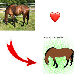 freetoedit competition horses transformation
