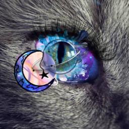 freetoedit cat galaxycat cateyes galaxyeyes rcgalaxyeye galaxyeye