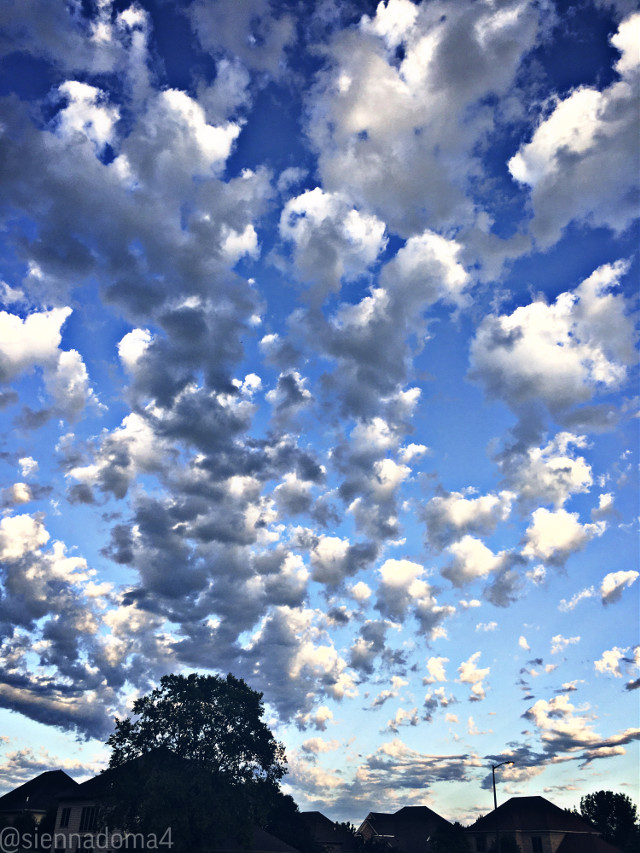 Hello everyone! These were the clouds last night. They looked so picturesque, like a painting :)   Anyways, I apologize for forgetting to post yesterday, I was pretty busy- 😬 And sports are starting back up again here so I have less time at home. I will continue my efforts to post every day, though. 💫  Tags 💗💗 @nqstiyq @xxjxst_leaxx @thats_mali / @just_mali_ @artist_noor @dilara_2210 / @the_lil_honey @draw2liv @jennaulin @gweni_120208 @ruyacenik_02 @aggie2_0 @rachelvbsb88 @sienna_the_artist @avery29 🤍🤍  My second account (me irl) : @just_sienna  Have a wonderful day/night! 🪐✨🦋  #clouds #sky #minnesota #summer #june #sunset #cloud #myphoto #blacklivesmatter #blm  💗✌🏻✨  👊🏻👊🏼👊🏽👊🏾👊🏿  #freetoedit