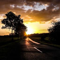 freetoedit sunlight way peaceful intothegreen
