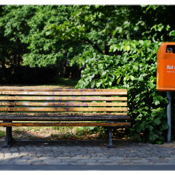 parkbankmittwoch park bench berlin freetoedit