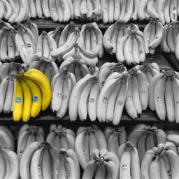 freetoedit banana bananas eccolorpop colorpop colorsplash