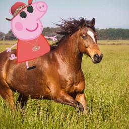 freetoedit peppapig peppa pig peppapigcowboy