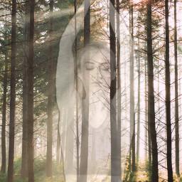 freetoedit meditation mindfulness yoga forest