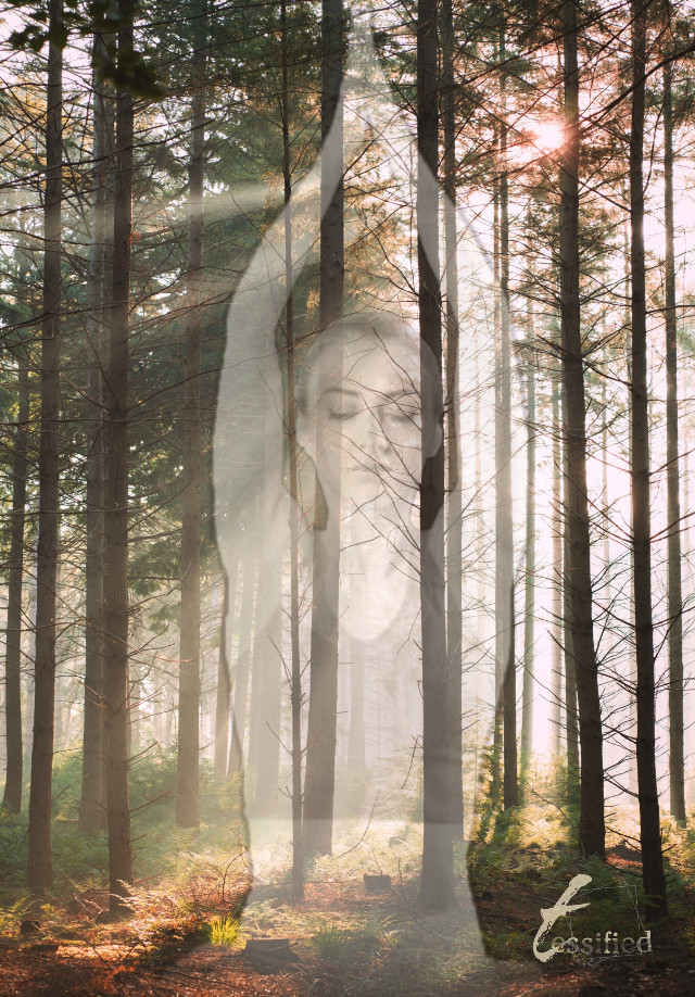 #freetoedit  #meditation #mindfulness #yoga #forest #grace #sanctuary #goddess# light #photography #nature