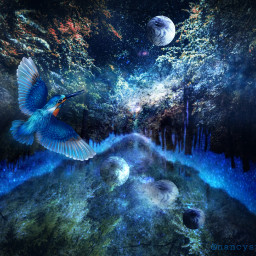 fantasy night galaxy forrest artisticedit freetoedit