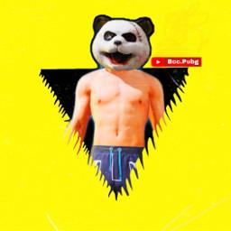 freedom pubg pubgmobile panda youtube freetoedit