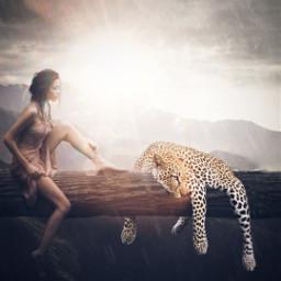 freetoedit leopard wildlife nature peaceful
