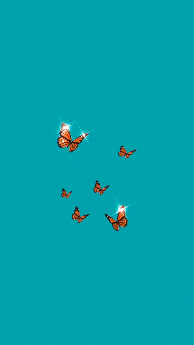 🦋🧡🦋𝚑𝚒 𝚊𝚗𝚍 𝚠𝚎𝚕𝚌𝚘𝚖𝚎 𝚝𝚘 𝚖𝚢 𝚗𝚎𝚠 𝚙𝚘𝚜𝚝! 🧡🦋🧡𝚝𝚑𝚎𝚖𝚎: aesthetic butterflies 🦋🧡🦋𝚌𝚘𝚕𝚘𝚛𝚜: turqoise abd orange 🧡🦋🧡𝚍𝚊𝚝𝚎: 23.06.2020 🦋🧡🦋𝚝𝚒𝚖𝚎: 08:16 🧡🦋🧡𝚏𝚘𝚕𝚕𝚘𝚠𝚎𝚛: 1436 🦋🧡🦋𝚏𝚘𝚕𝚕𝚘𝚠 𝚖𝚎 𝚏𝚘𝚛 𝚖𝚘𝚛𝚎! 🧡🦋🧡𝙸 𝚏𝚘𝚕𝚕𝚘𝚠 𝚋𝚊𝚌𝚔! 🦋🧡🦋[𝙷𝚊𝚜𝚑𝚝𝚊𝚐𝚜]🦋🧡🦋 #aesthetic #butterfly #butterflies #turquoise #orange #picfrompinterest #freetoedit #freetoremix 🧡🦋🧡[𝚃𝚊𝚐𝚜]🧡🦋🧡 {💖} @_sweet_bear_ 𝚙𝚕𝚜 𝚐𝚘 𝚏𝚘𝚕𝚕𝚘𝚠 𝚖𝚢 𝚜𝚠𝚎𝚎𝚝 𝚊𝚗𝚐𝚎𝚕!!! {💓} @_sweet_aesthetic 𝚒𝚝'𝚜 𝚑𝚎𝚛 𝚘𝚝𝚑𝚎𝚛 𝚊𝚌𝚌!!! 🦋🧡🦋[𝚁𝚊𝚗𝚍𝚘𝚖 𝚃𝚊𝚐]🦋🧡🦋 {🍡} @llamaweiler  🧡🦋🧡𝚋𝚢𝚎 𝚊𝚗𝚍 𝚑𝚊𝚟𝚎 𝚊 𝚗𝚒𝚌𝚎 𝚍𝚊𝚢!  ~ @horse_dreamer