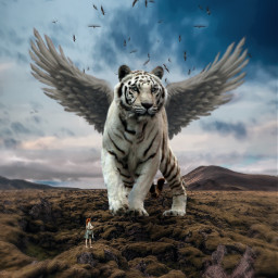 freetoedit tiger wings birds girl