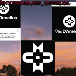 damelios branding freetoedit
