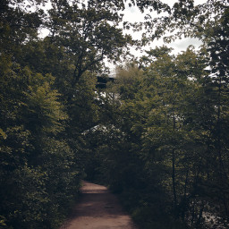 trail hike minnehahafalls mn minnesota freetoedit