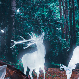 freetoedit remix dpeditz2003 surrealism madewithpicsart myedit pink inspiration creativity summer awesome aesthetic deer magical glow forest magicalforest love animal