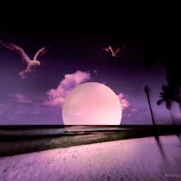 freetoedit vipshoutout aesthetic romantic landscape