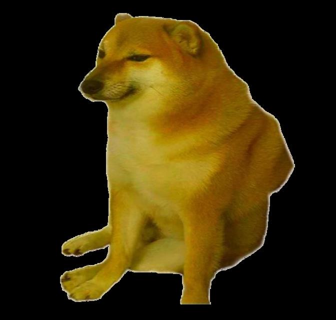 cheems <3 #cheems #meme #dog #wholesomememe