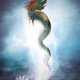 gyarados pokemon stormysea fog dragon