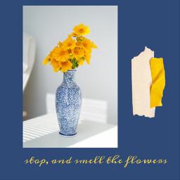 freetoedit flowers yellow yellowaesthetic yellowflowers