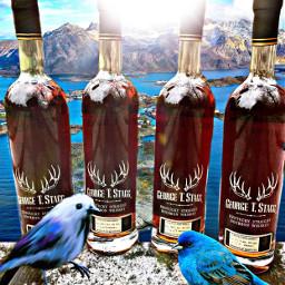 freetoedit bluebird kentucky whisky stag