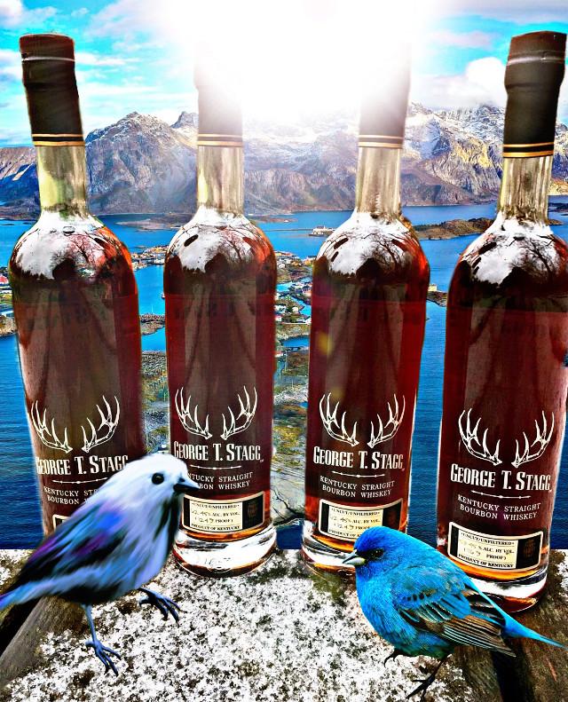 #freetoedit #bluebird #kentucky #whisky #stag #deerantlers #viewpoint #mountainview #seasons #island #miles #alcohol #beverage #celebraiton #weekend #goodtimes #nature #sunshine #hdreffect