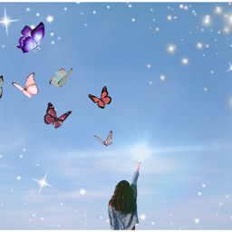 freetoedit butterfly irctouchthesky touchthesky