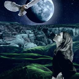 freetoedit night moon girl owl