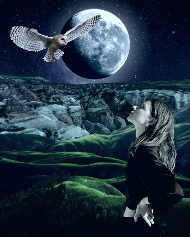 Have a gr8 monday and week planet 👋🏻👽👉🏻☕️🍩🍪🍬@PA 😊  #freetoedit #night #moon #girl #owl #landscape #alienized #wallpaper #uhd #editedwithpicsart