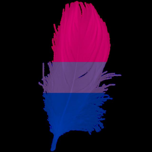 #pride #bisexual #freetoedit