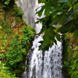 freetoedit oregonlife greenery waterfall