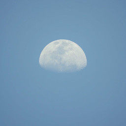 nature lookingup thesky lateafternoon themoonabove daylight daymoon freetoedit