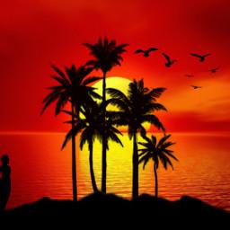 freetoedit sunset madewithpicsart mycreativity editedbyme