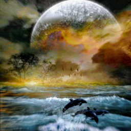 freetoedit dolphins fullmoon island golden