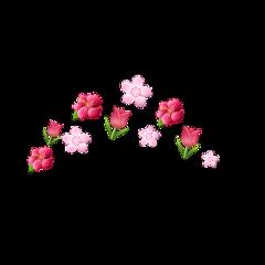 freetoedit flowers flowercrown crown pinkflowercrown