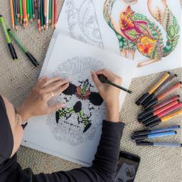 coloringbookforadults enchantedforest metime flatlay netly freetoedit