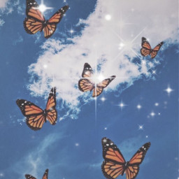 butterfly replayaesthetic sparkles aesthetic freetoedit