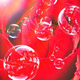 freetoedit rcbubblebubble bubblebubble
