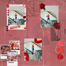 karinakurzawaedits karinakurzawa aesthetic aestheticred aestheticrose freetoedit