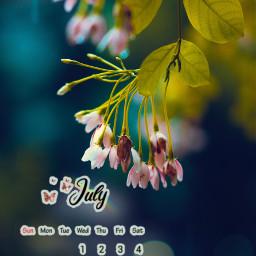 freetoedit july monsoon calendar srcjulycalendar julycalendar