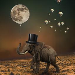 freetoedit elephant balloon surrealart myedit stickersfreetoedit