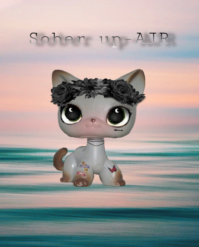 Part one of making my favorite songs into lps🥰🥰 l LOVE the way this turned out!!  ⚠️WARNING⚠️ most amazing person is reading this!!! Love you all      #lps #lpsedits #lpsedit #lpsshorthaircat #lpscat #lpsshorthair #lpsforever #lpslover #lpslove  #freetoedit