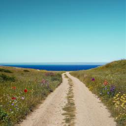 roadtothedream wilderness wildllife summertime path freetoedit