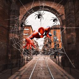 spiders spiderman spiderweb city freetoedit