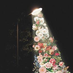 цветы пиксарт фонарь стикер flowers freetoedit